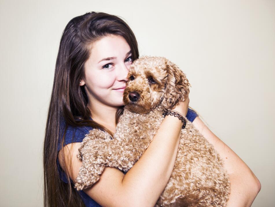 tu perro revela tu personalidad