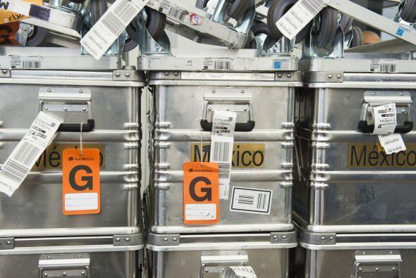 En estas maletas, el equipo mexicano carga el material de trabajo que ut...