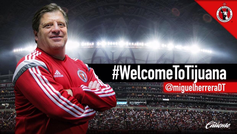 El 'Piojo' es el nuevo entrenador de Xolos.