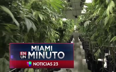 'Miami en un Minuto': legisladores estatales aprobaron más de una docena...