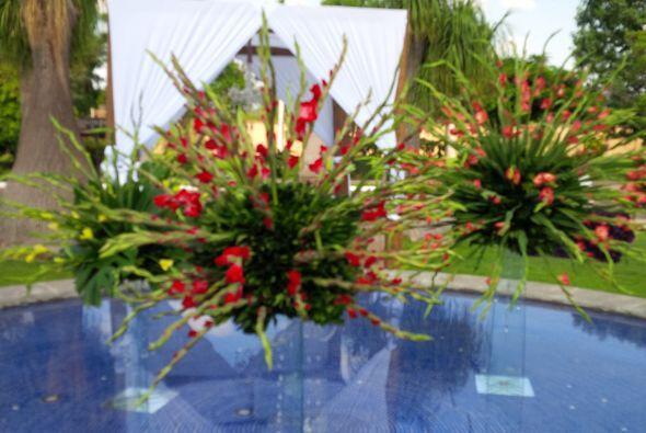 Parte del jardín de la hacienda donde ya se lleva a cabo la boda de Ana...