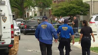 Una mujer acuchilló a tres bebés y dos adultos en una guardería de Nueva York, después se cortó las venas
