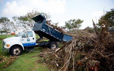 Recolección de residuos del huracán Irma