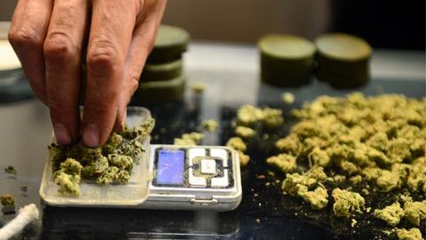 La ciudad de Los Ángeles regula la venta y cultivo de marihuana p...