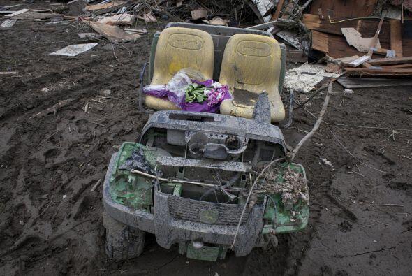 No obstante, diversos objetos como este auto de juguete han salido entre...