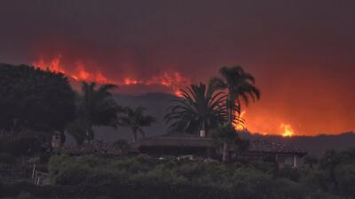 'Fuego Whittier' registrado en la reserva forestal Los Padres en...