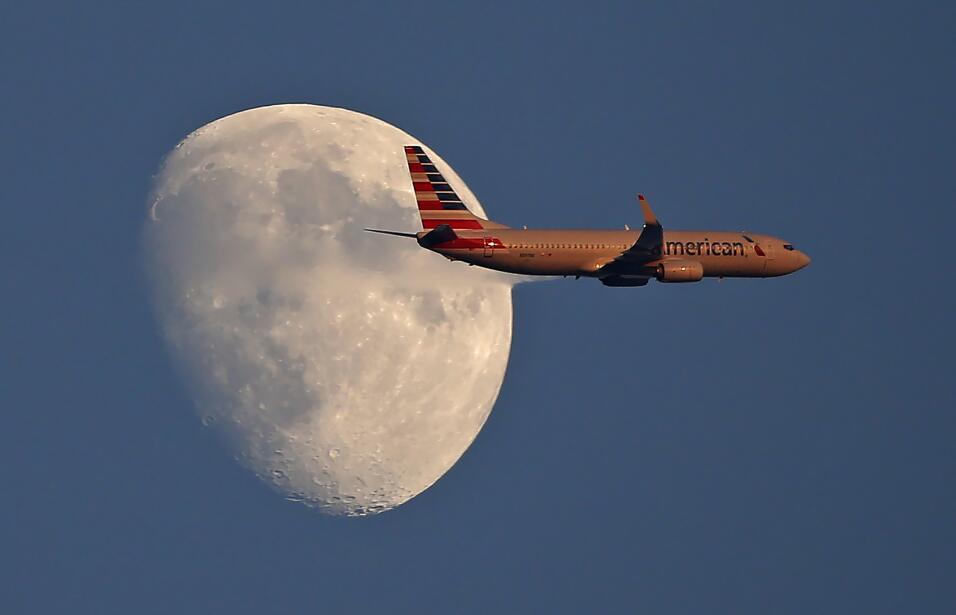 Muerte de cachorro en portaequipajes de avión de United Airlines genera...