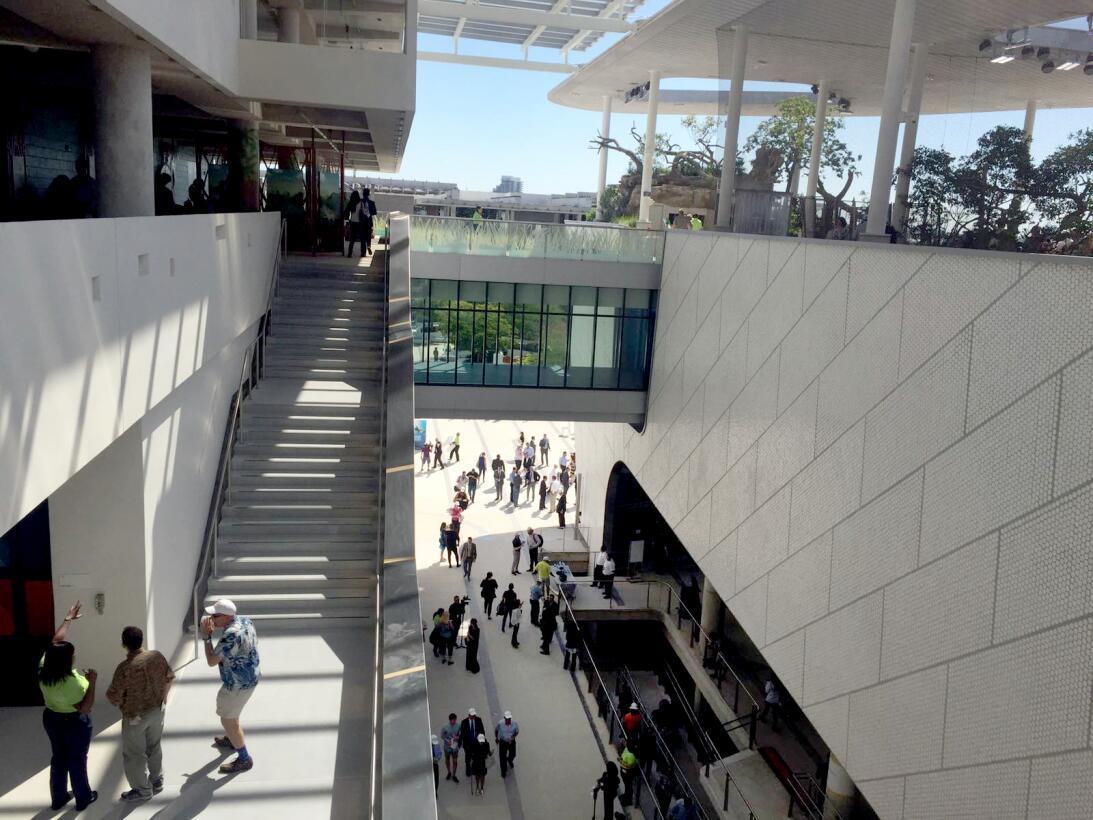 En fotos: una visita por el nuevo museo de la ciencia de Miami WhatsApp...