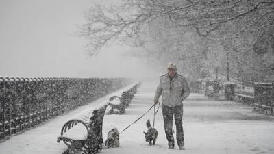 El termómetro se desploma 30 grados en 12 horas: Nueva York padece su quinta tormenta de nieve en un mes