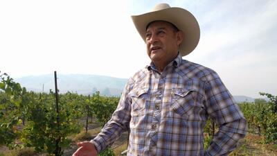 Robledo tiene 350 acres de viñedos y bodegas en Sonoma, Napa, Mendocino,...