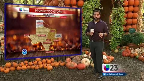 El tiempo: otoño desde el jardín botánico