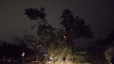 Tornados provocan daños a decenas de viviendas en San Antonio