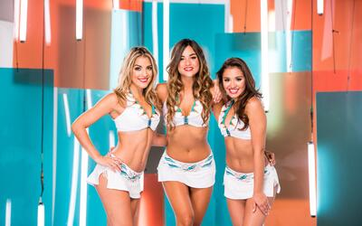 La sensualidad de las cheerleaders de los Dolphins te subirá la temperatura