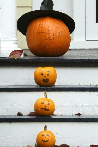 3. 'Mini pumpkins': Estos pequeños frutos de la naturaleza pueden...