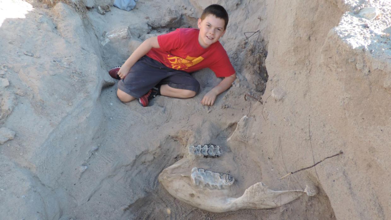 El niño Jude Sparks posa con los restos de una especie prehist&oa...