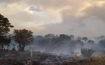 Imagen del incendio que consume el área de Sonoita, Arizona.