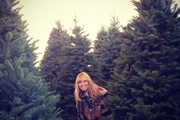 Heidi Klum se divirtió mucho escogiendo el árbol para su c...