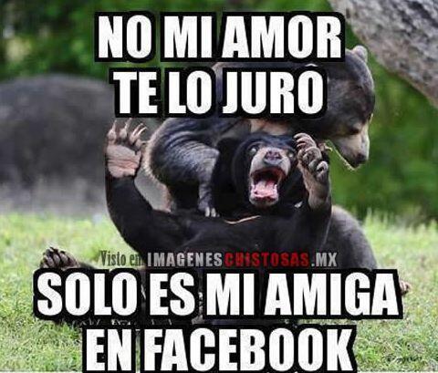 """""""No mi amor te lo juro. Solo es mi amiga en Facebook""""."""