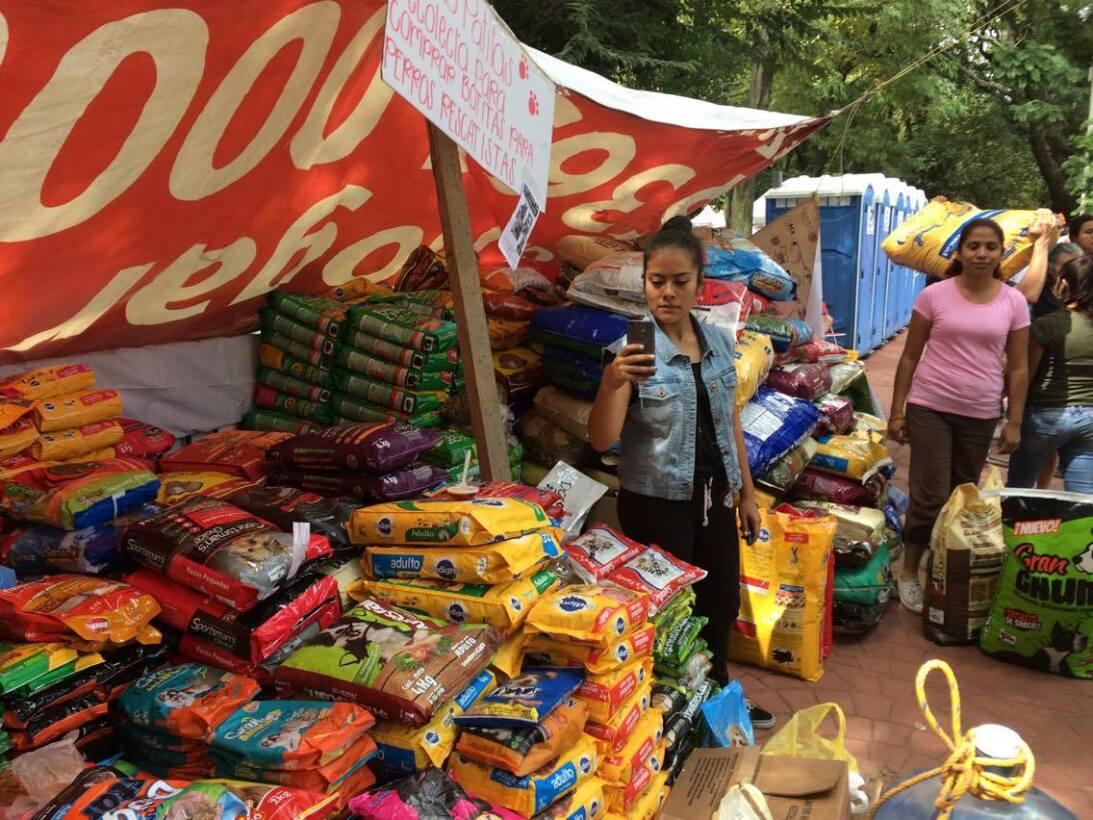 En la capital mexicana, varios voluntarios levantaron un albergue improv...