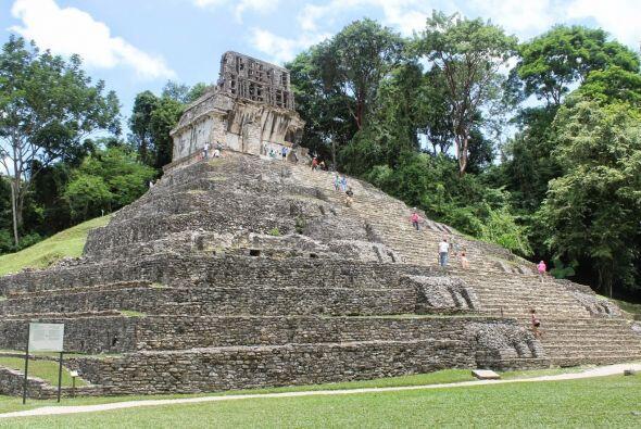 El área fue descubierta en el 2005, y hasta hoy solo se ha explorado un...