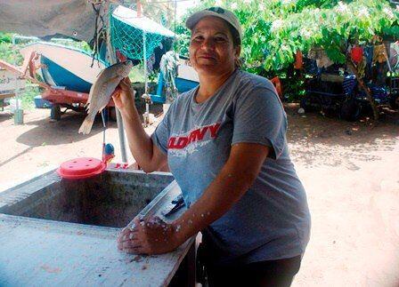 El proceso de escamar el pescado que llega está a cargo de Purula