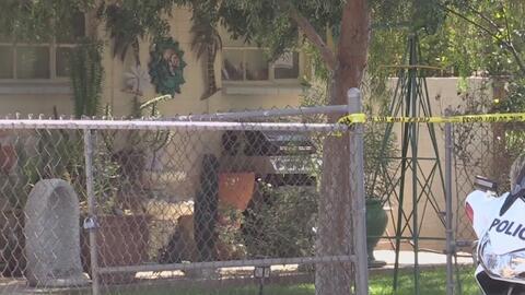 Niño de un año de edad muere en ataque del perro de la familia