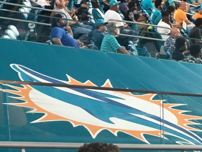 Desde la mirada de los fanáticos: así se vivió la fiesta de Dolphins-Fal...