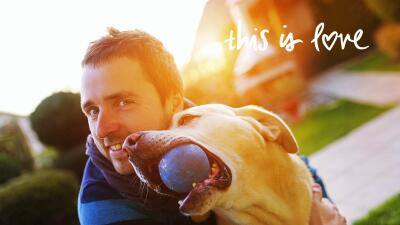 Relación con los perros