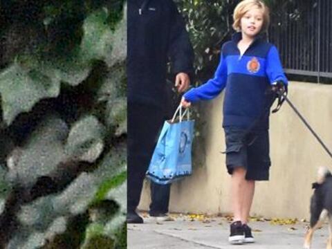 Los hijos de Brangelina fueron captados de paseo con su peludo amigo e i...