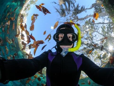Estos amantes del buceo y las fotos tienen los mejores 'photobombs' del...