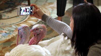 El día que los presidentes de EEUU perdonan a un pavo (fotos)