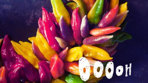 El ají peruano, menos popular que el chile mexicano, pero no meno...