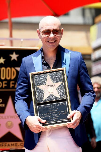 La ciudad de Hollywood designó el 15 de julio como el Día de Pitbull.