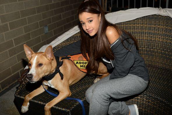 Ariana ama a los perros tanto como a la música.
