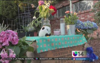 La madre de los menores presuntamente asesinados por su padre declara qu...