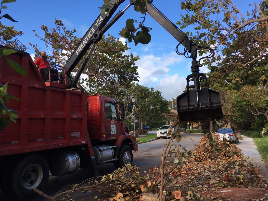 La gran limpieza de la Florida después del huracán Irma, paso a paso (EN...