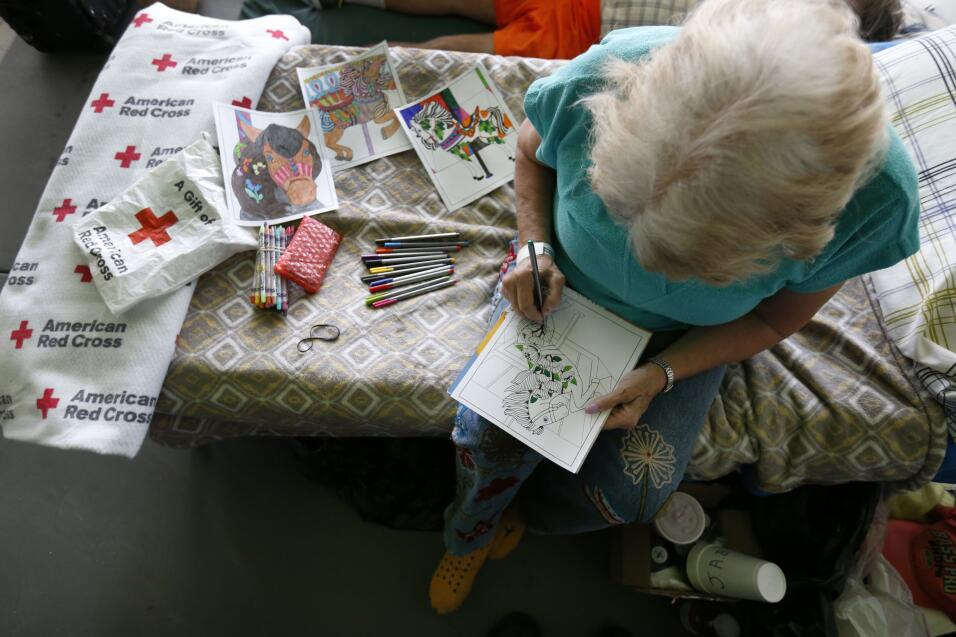 Kudy Ann Bell spends her time coloring at a special needs shelter, Thurs...