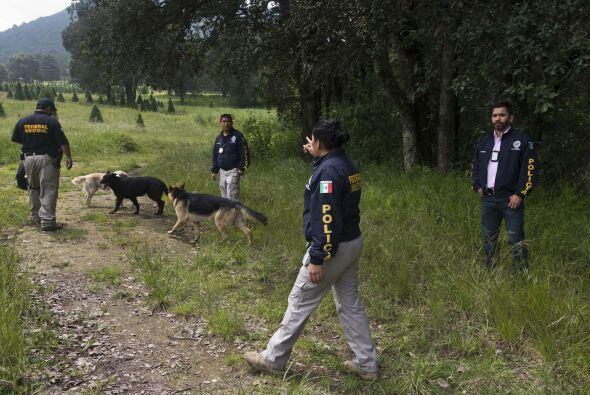 La policía del Estado de México tampoco ha confirmado que los cuerpos se...