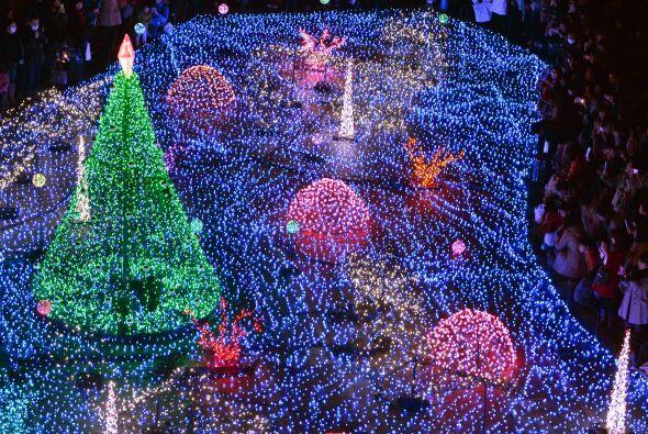 En Starlight Garden fueron más de 180 mil luces en colores azules y blan...