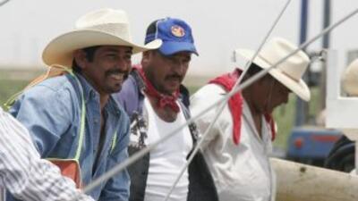 La mayoría de los trabajadores agrícolas en Estados Unidos son de origen...