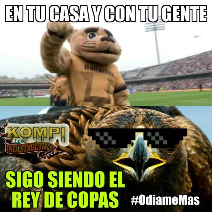Pumas busca al agresor de Cecilio Domínguez 17264120_1275676399181719_33...