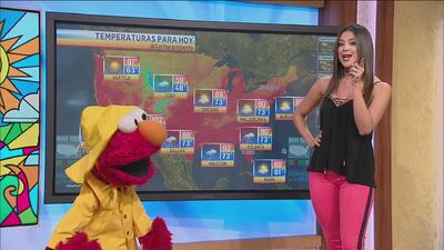 Elmo está preparado para las lluvias de este fin de semana