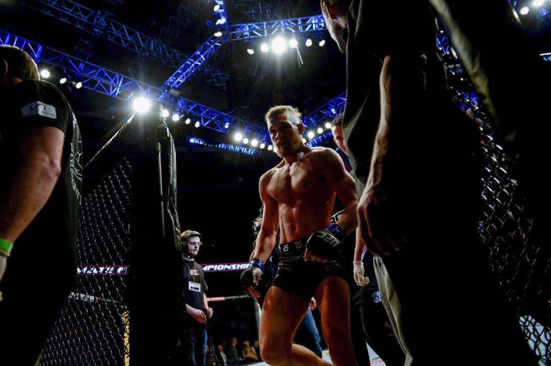 Floyd vs. Conor: Lo mejor de dos mundos vs. Brimage.jpg