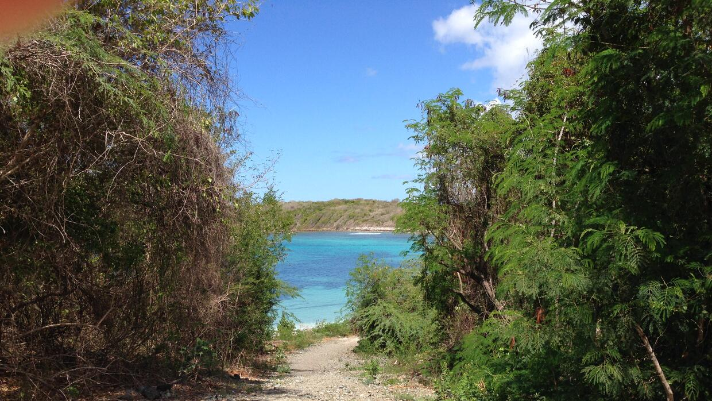 Entrada a playa Pata Prieta, Vieques