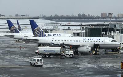 Tras la muerte de un perro a bordo de un avión de United Airlines...