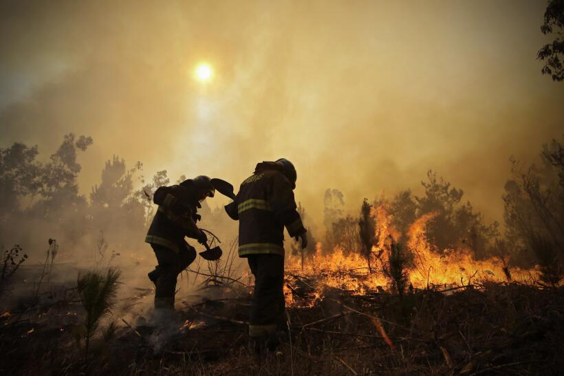 Fuego Chile