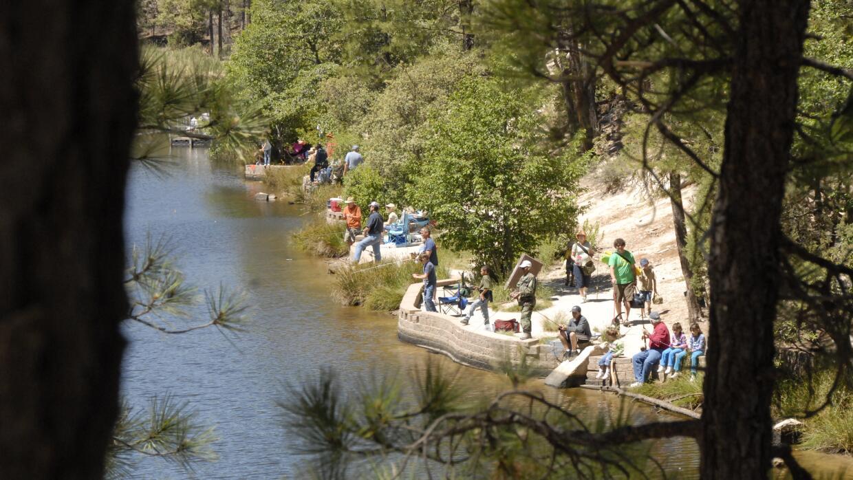 Actividades en Tonto Creek _DSC7247.JPG