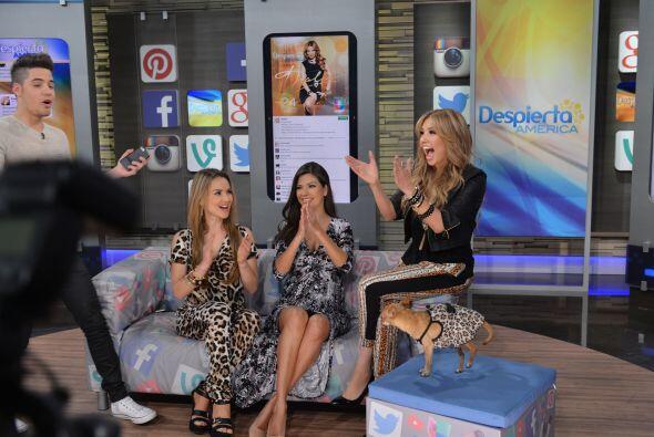 La comunicación que mantiene Thalía con sus fans es digna de premiarse.