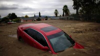 Algunos autos dañados por inundaciones son revendidos sin que el comprad...