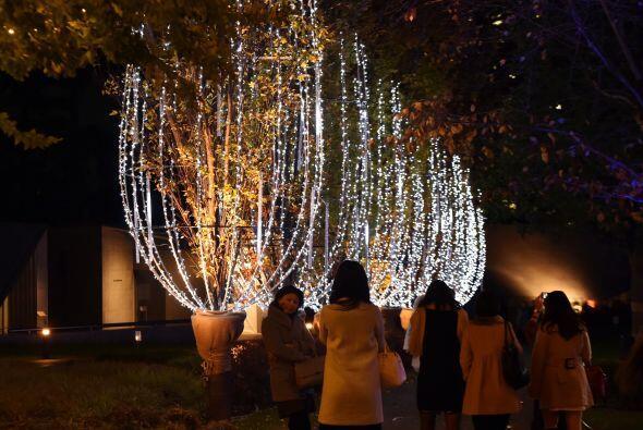 La navidad se siente con miles de luces sobre sobre tu cabeza.